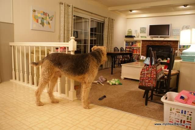 BHD Goodbye Kitchen Floor