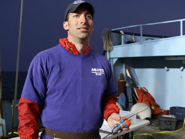 Dr Nick Whitney Shark Researcher