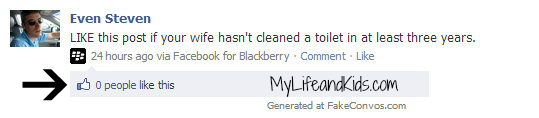 If My husband were on facebook cleaning toilets