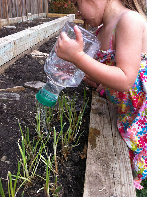 Gardening With Kids My Life And Kids
