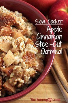 slow-cooker-apple-cinnamon-steel-cut-oatmeal