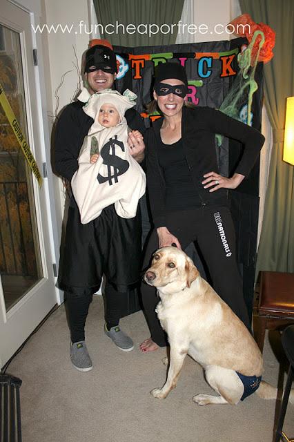 Pirate Dog Costume Video