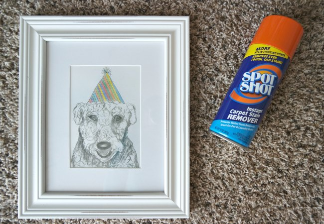 Do you have deep pet stains in your carpet that smell bad? Here's a solution to clean carpet stains easily without a machine.