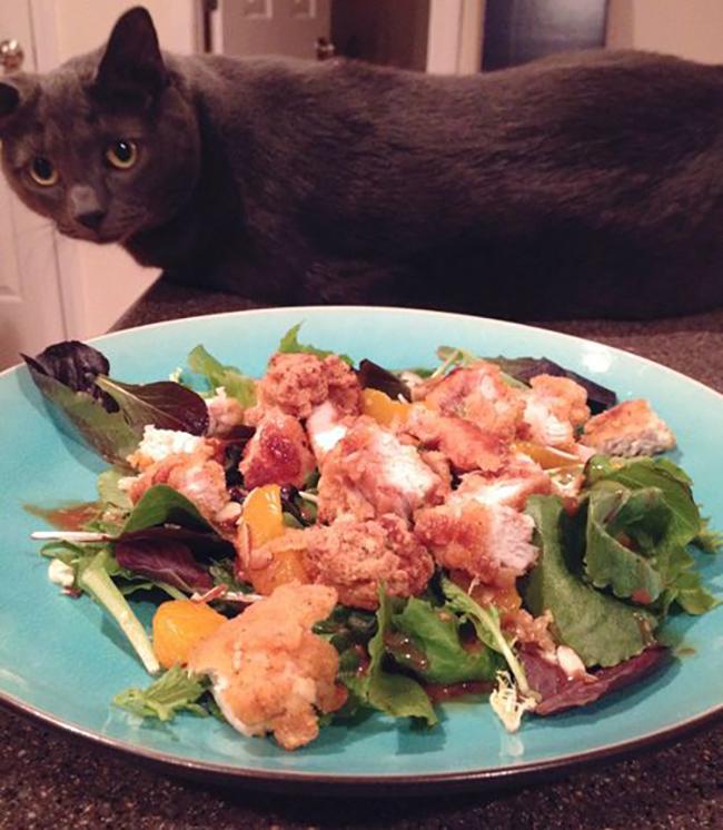 asian-chicken-salad-copy