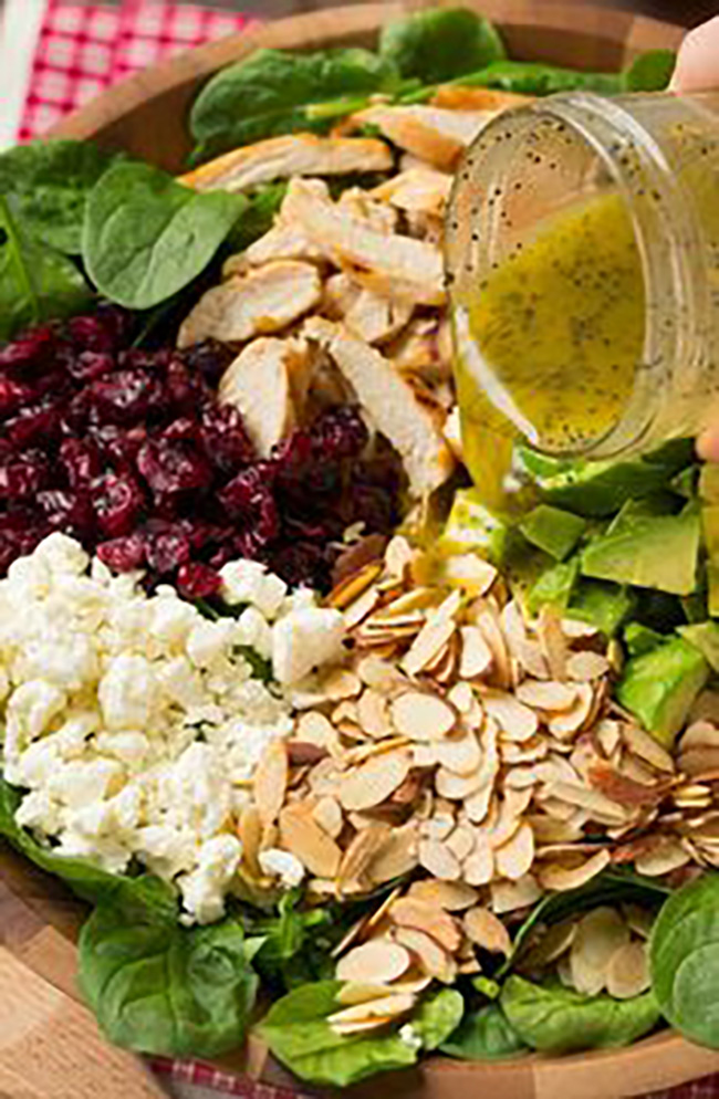 cranberry-avocado-spinach-salad-with-chicken-and-orange-poppy-seed-dressing-copy